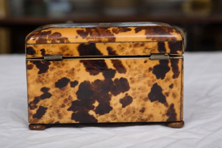 19th Century English Regency Tortoiseshell Tea Caddy In Good Condition For Sale In WEST PALM BEACH, FL