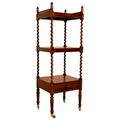19th Century English Rosewood Étagère