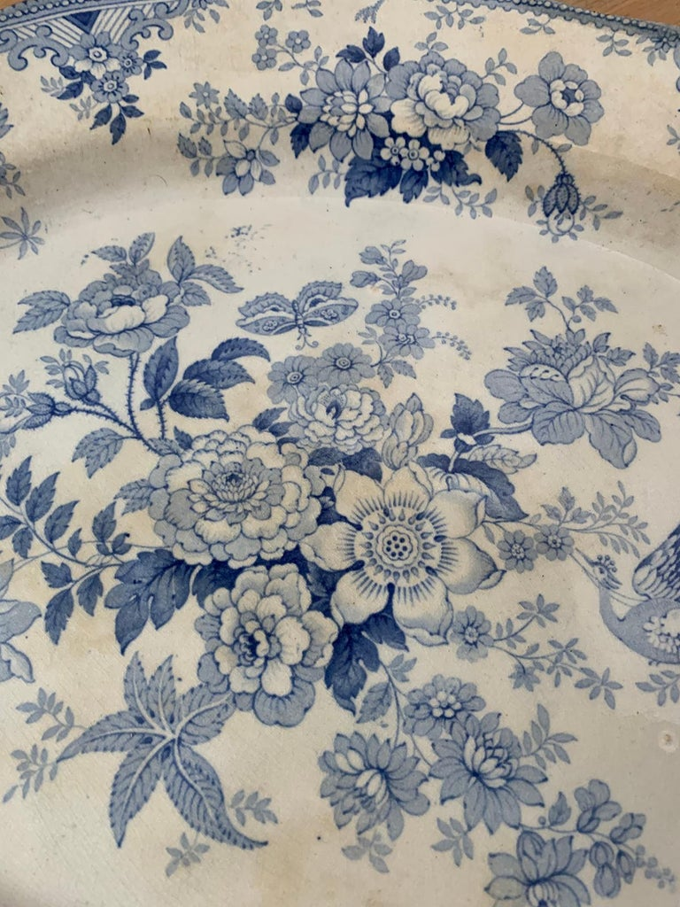 19th Century English Transferware Charger in Asiatic Pheasants Pattern Signed JF For Sale 3