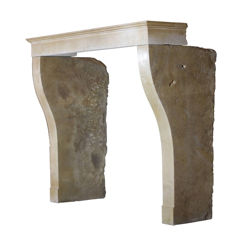Carved 19th Century Fine French Limestone Antique Fireplace Surround For Sale