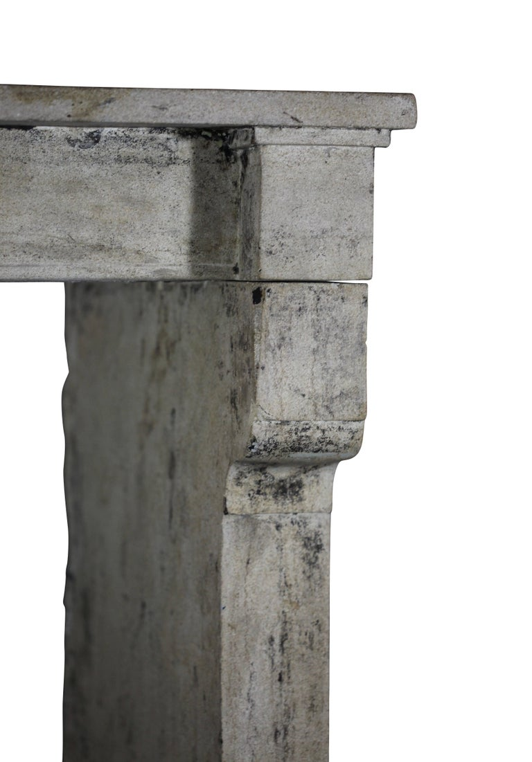 Carved 19th Century Fine French Rustic Limestone Antique Fireplace Surround For Sale