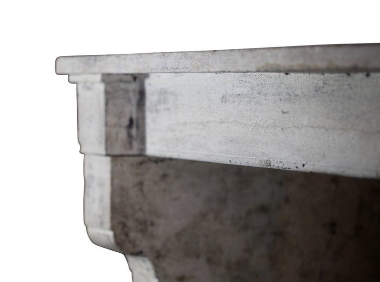 19th Century Fine French Rustic Limestone Antique Fireplace Surround In Excellent Condition For Sale In Beervelde, BE