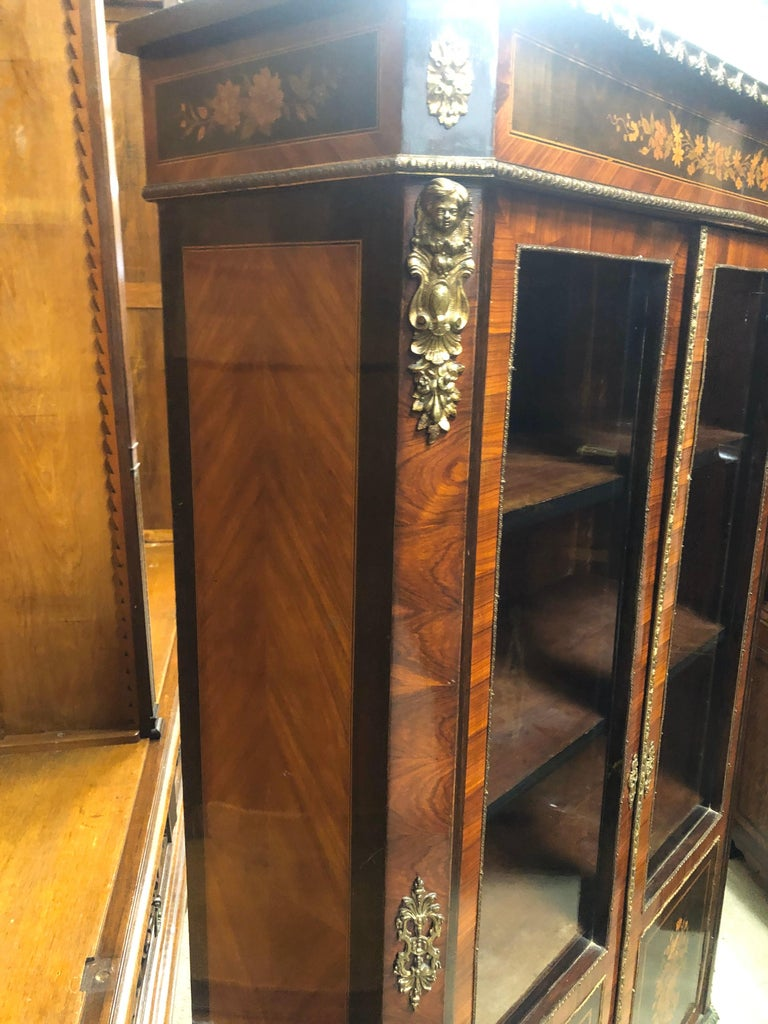 French 19th Century France Wood Napoleon III Kingwood Rosewood Marquetry Cabinet, 1850s For Sale