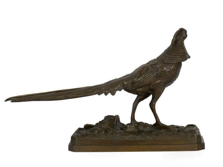 19th Century French Antique Bronze Sculpture of Golden Pheasant by Henri Trodoux For Sale 8