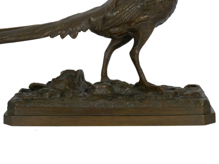 19th Century French Antique Bronze Sculpture of Golden Pheasant by Henri Trodoux For Sale 10