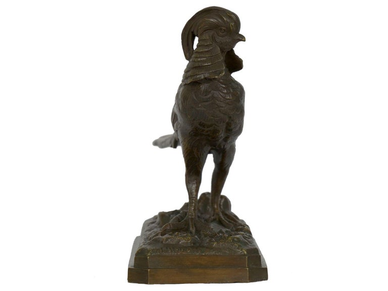19th Century French Antique Bronze Sculpture of Golden Pheasant by Henri Trodoux For Sale 13