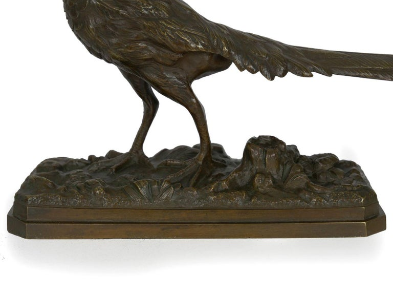 19th Century French Antique Bronze Sculpture of Golden Pheasant by Henri Trodoux For Sale 1