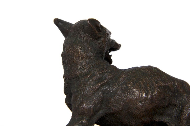 """19th Century French Antique Bronze Sculpture of """"Renard"""" by Alfred Dubucand For Sale 8"""