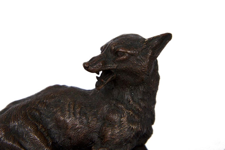 A rare and exceptionally well detailed model of a trapped fox, it is an expertly cast work that beautifully depicts this fear and surprise in the features of the captured creature. Always a realist and never Romantic, his animals are anatomically