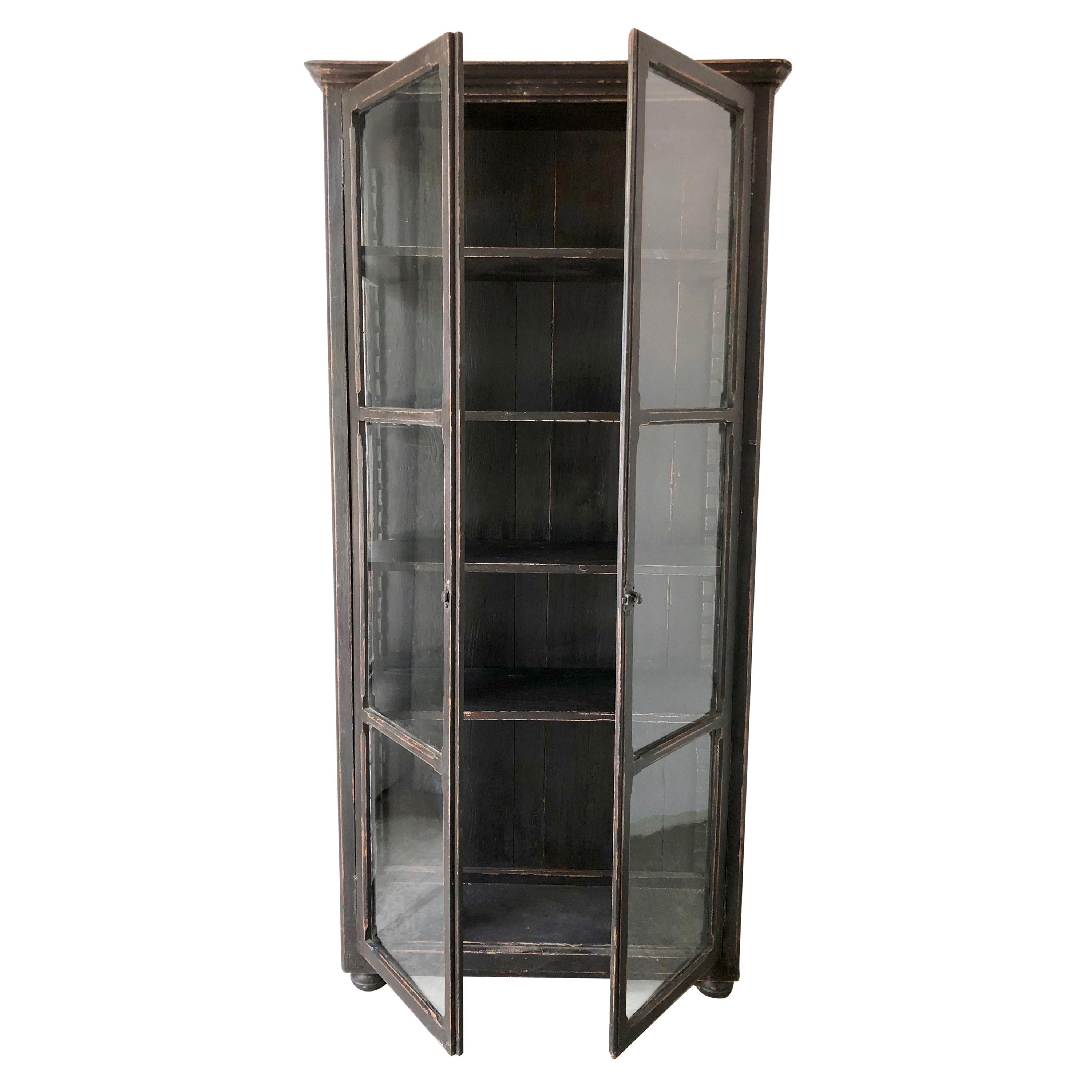 19th Century French Bibliotheque/Display Cabinet