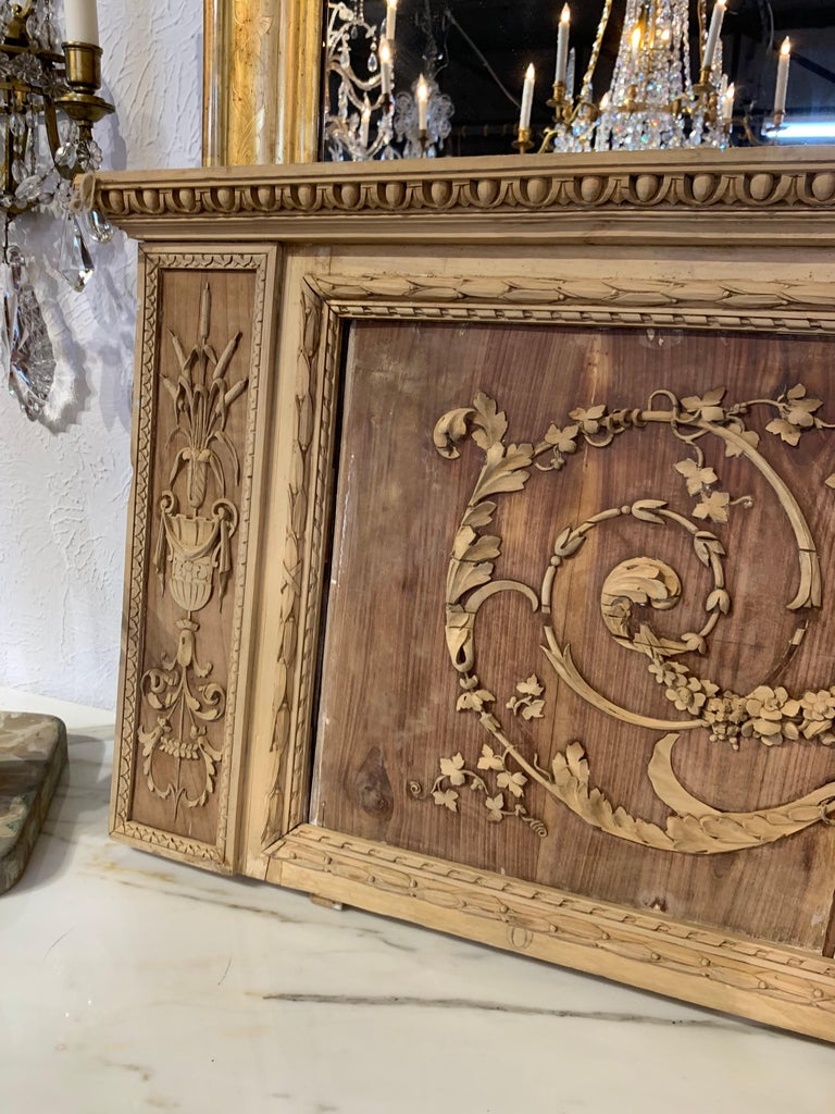 19th Century French Bleached and Carved Neoclassical Panel For Sale 2