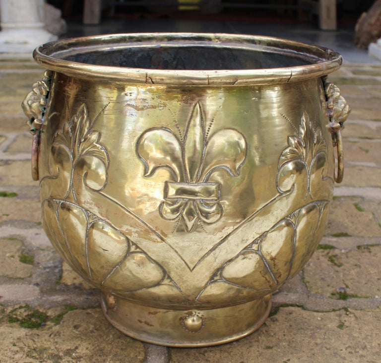 19th century French bronze planter with fleur-de-lis, a lily flower particularly associated with the French monarchy, and lion head side handles.