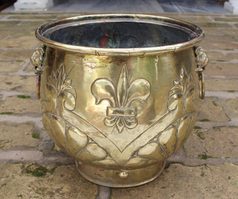 19th Century French Bronze Planter with Fleur-de-lis and Lion Head Side Handles In Good Condition For Sale In Malaga, ES