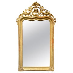 19th Century French Carved and Giltwood Louis XV Style Mirror