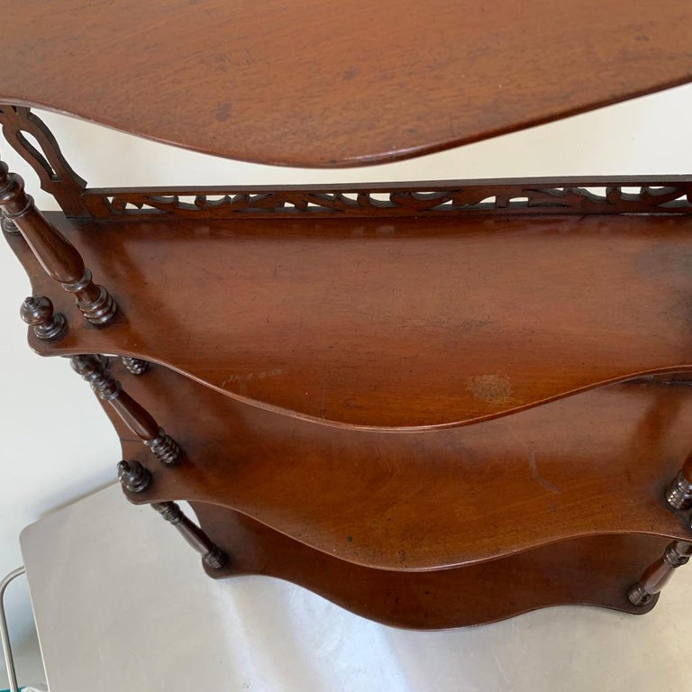 19th Century French Carved Freestanding or Hanging Shelves in Mahogany For Sale 6