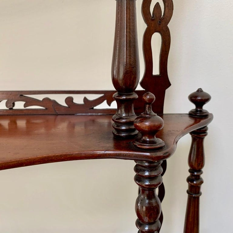19th Century French Carved Freestanding or Hanging Shelves in Mahogany For Sale 4