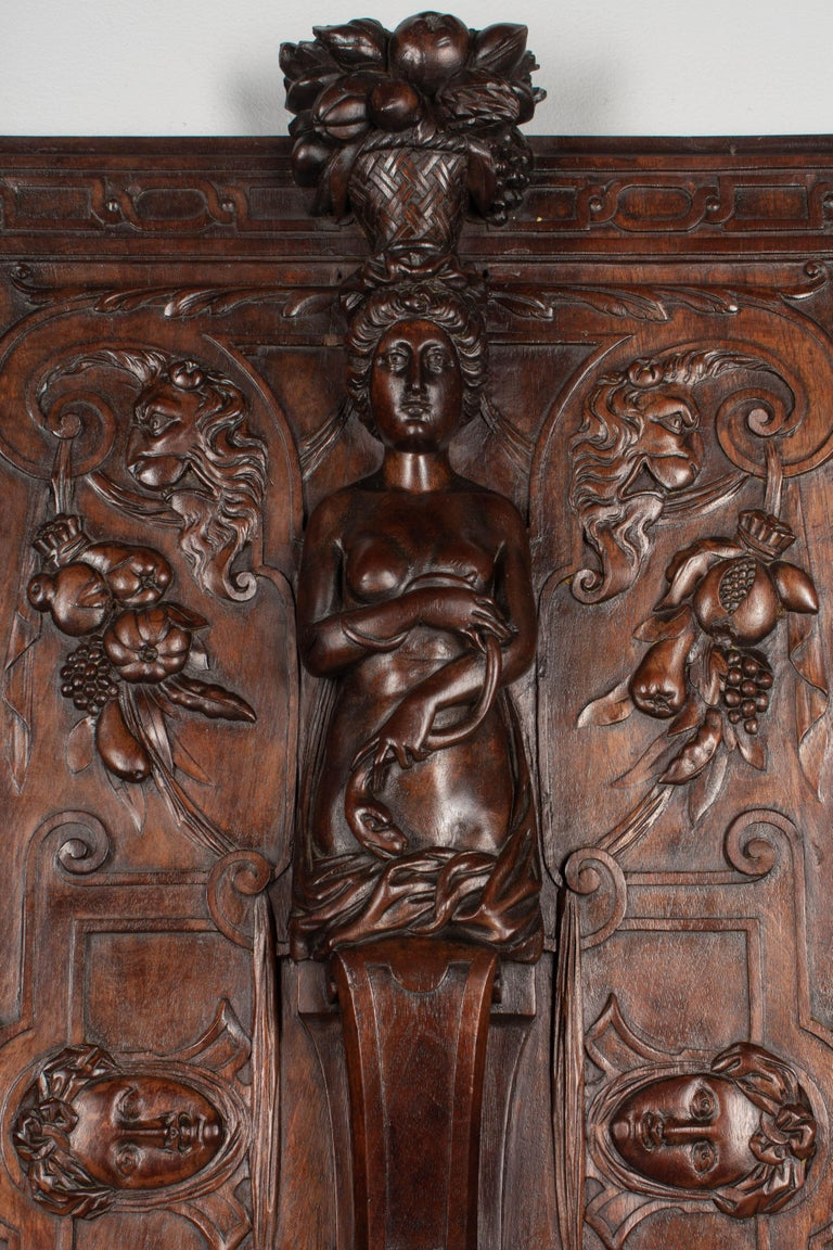Hand-Carved 19th Century French Carved Walnut Decorative Panel For Sale