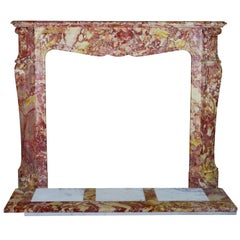 19th Century French Classic Marble Antique Fireplace in the Style of Pompadour
