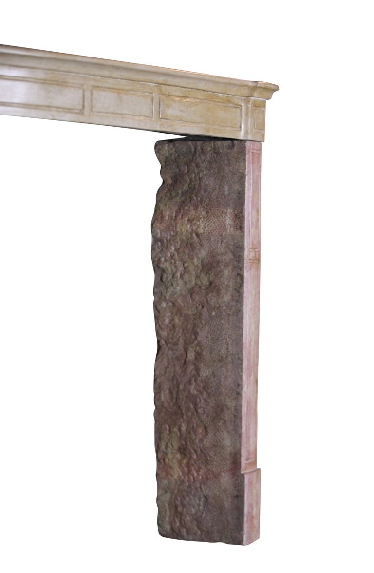 19th Century French Country Antique Fireplace Surround in Bicolor Lime Stone For Sale 1