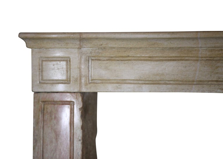 19th Century French Country Antique Fireplace Surround in Bicolor Lime Stone For Sale 2