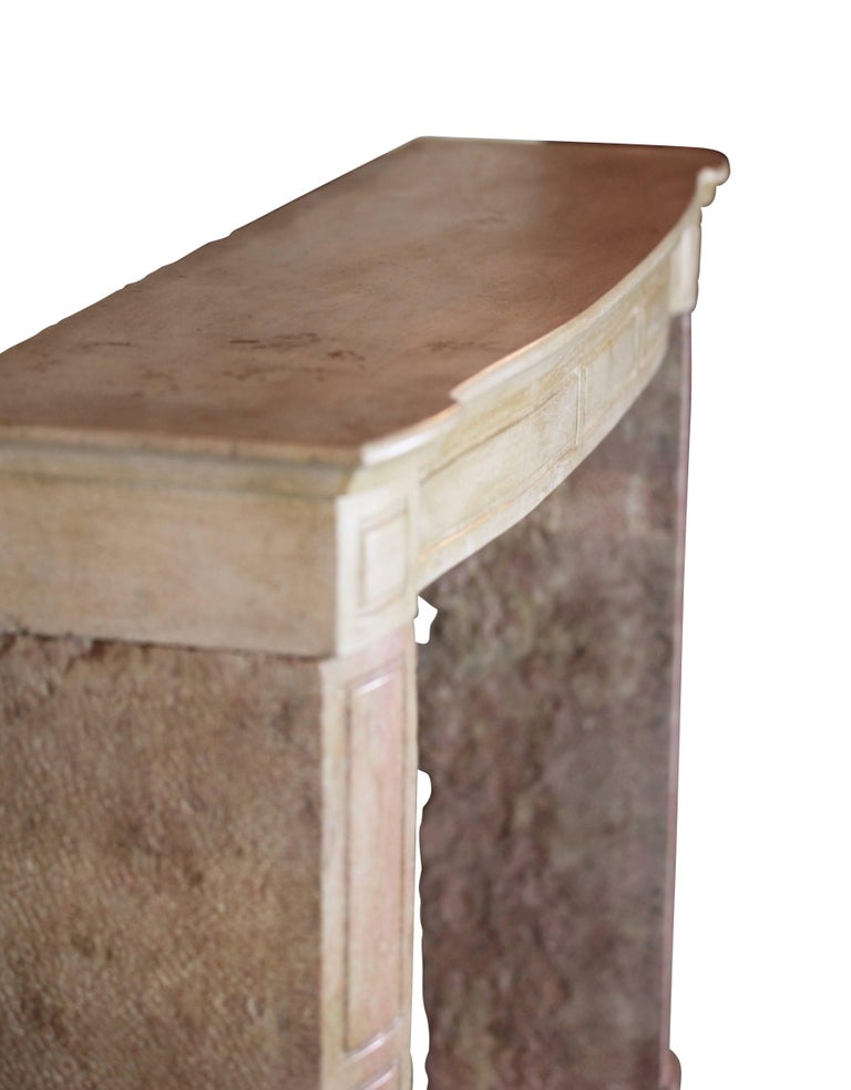 19th Century French Country Antique Fireplace Surround in Bicolor Lime Stone For Sale 4