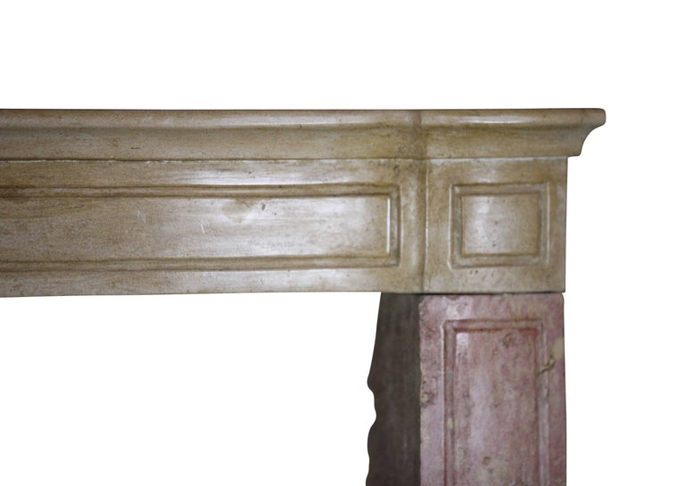 19th Century French Country Antique Fireplace Surround in Bicolor Lime Stone For Sale 5