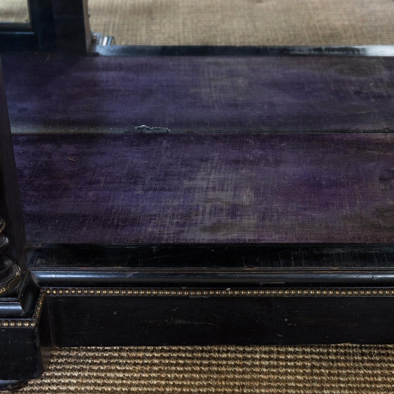 19th Century French Ebonized Side Cabinet For Sale 10