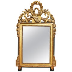 19th Century French Gilded Hand Carved Wooden Mirror