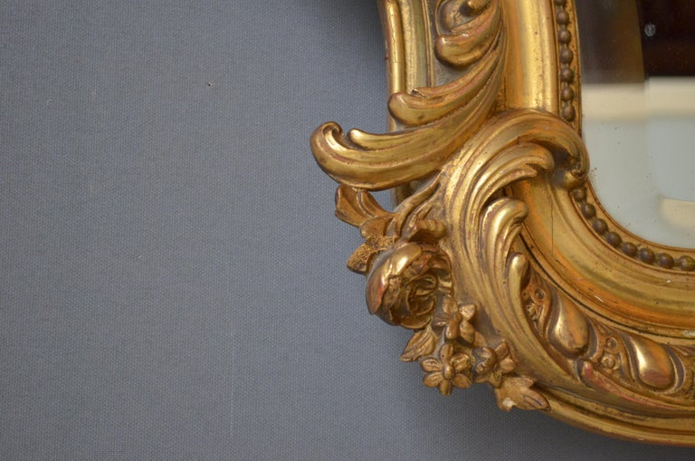 Late 19th Century 19th Century French Giltwood Mirror For Sale