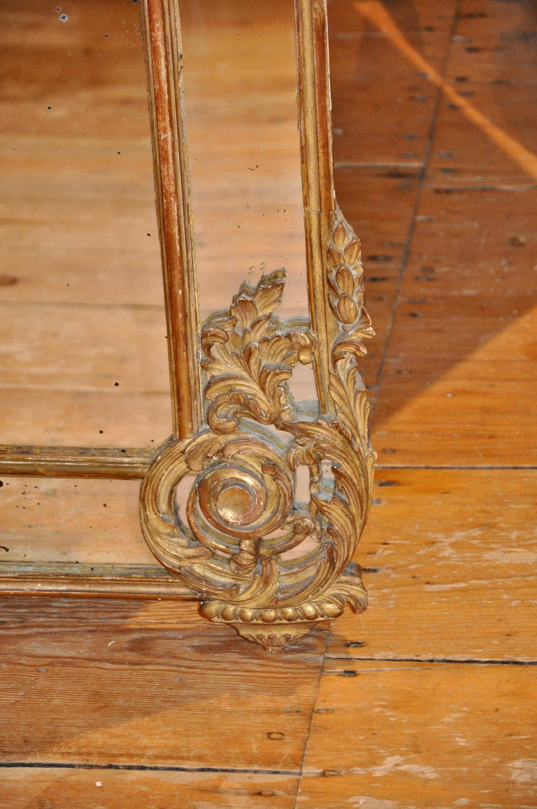 19th Century French Giltwood Regence Style Mirror In Good Condition For Sale In Essex, MA