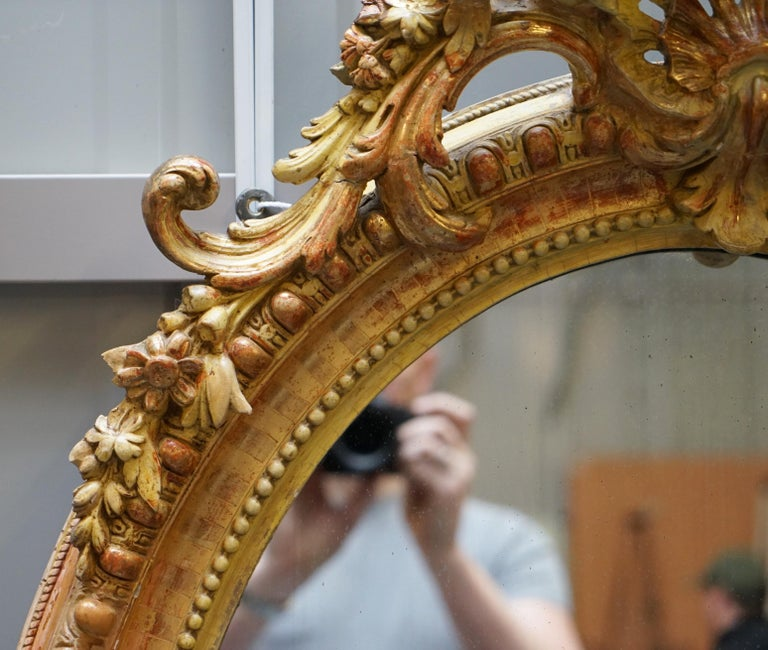 Victorian 19th Century French Gold Giltwood Mirror, Gesso Carving Floral Ribbon & Shell For Sale
