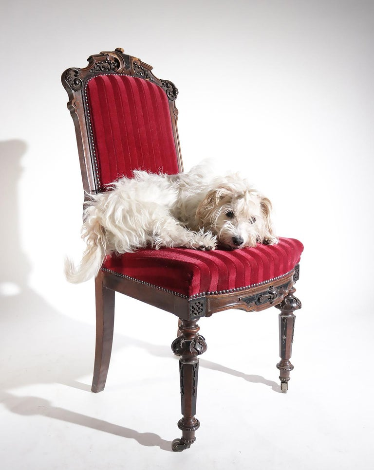 Louis XVI 19th Century French Hand Carved Wooden Chair Metal Ornaments Red Velvet For Sale