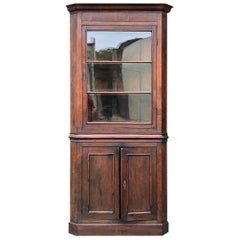 19th Century French Louis Philippe Corner Cabinet