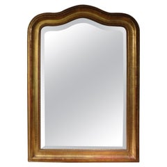 19th Century French Louis Philippe Giltwood Beveled Mirror