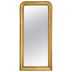 19th Century French Louis Philippe Gold Leaf Mirror