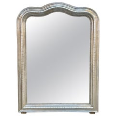 19th Century French Louis Philippe Silver Leaf Arch Top Mirror