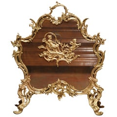 19th Century French Louis XV Carved Bronze Doré Fireplace Screen with Cherubs