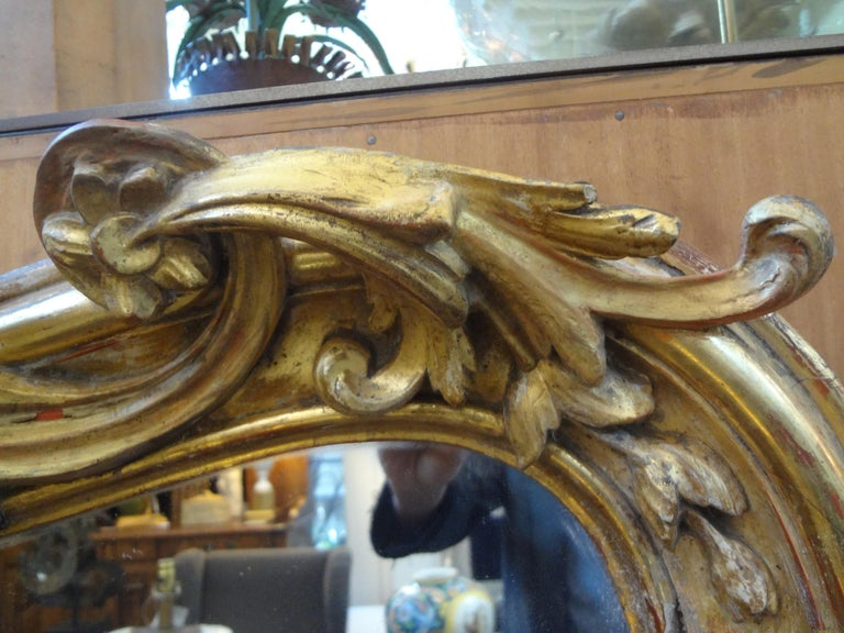19th Century French Louis XV Style Giltwood Mirror For Sale 1