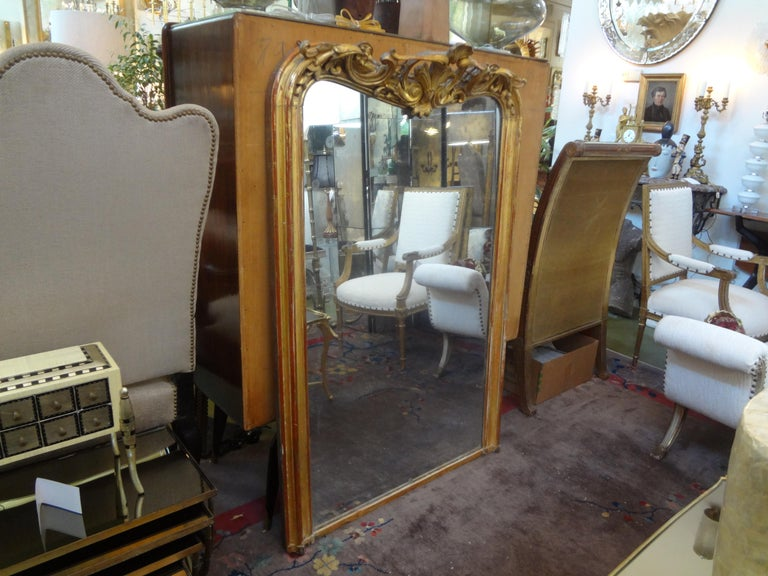 19th Century French Louis XV Style Giltwood Mirror For Sale 3