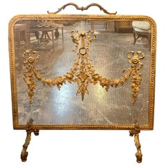 19th Century French Louis XVI Style Bronze Fireplace Screen