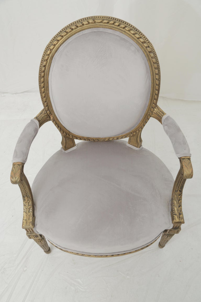 19th Century French Louis XVI Style Carved Giltwood & Pale Grey Suede Armchairs For Sale 6