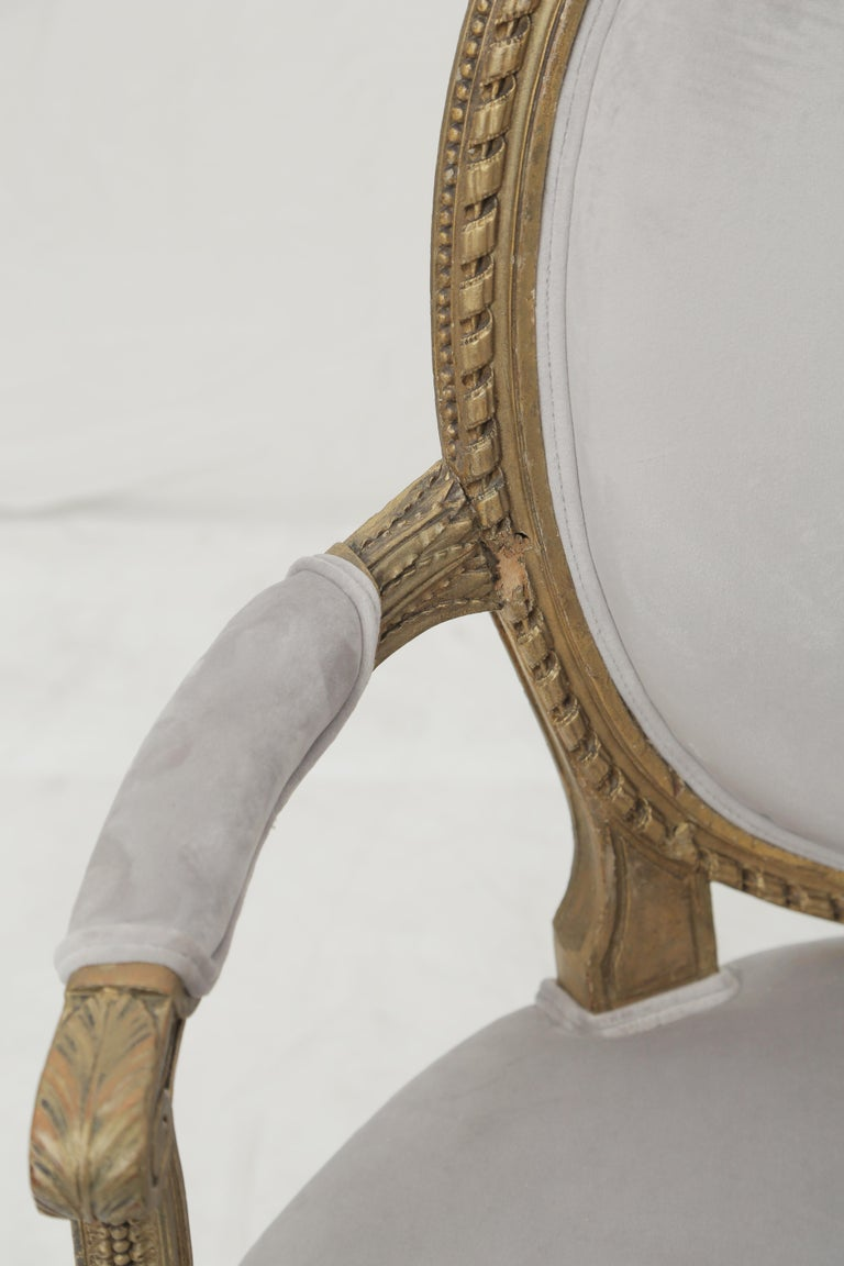 19th Century French Louis XVI Style Carved Giltwood & Pale Grey Suede Armchairs For Sale 7