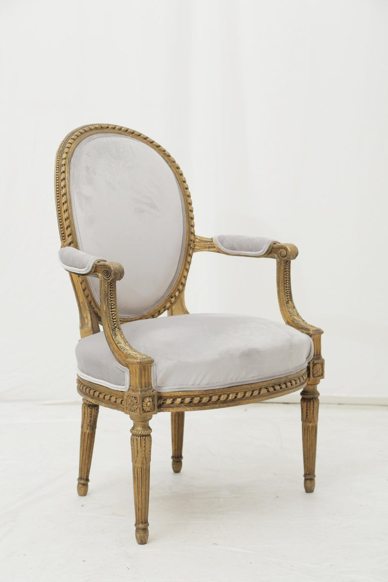 19th Century French Louis XVI Style Carved Giltwood & Pale Grey Suede Armchairs In Good Condition For Sale In Miami, FL