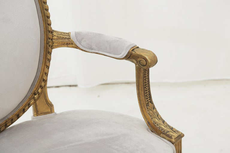 Beech 19th Century French Louis XVI Style Carved Giltwood & Pale Grey Suede Armchairs For Sale