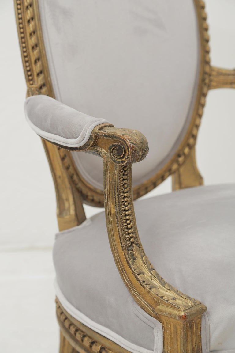19th Century French Louis XVI Style Carved Giltwood & Pale Grey Suede Armchairs For Sale 2