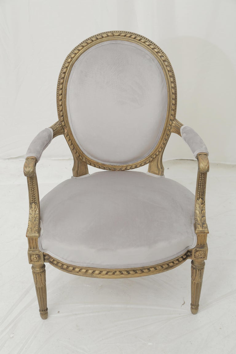 19th Century French Louis XVI Style Carved Giltwood & Pale Grey Suede Armchairs For Sale 5