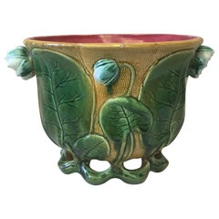 19th Century French Majolica Water Lily Cache Pot