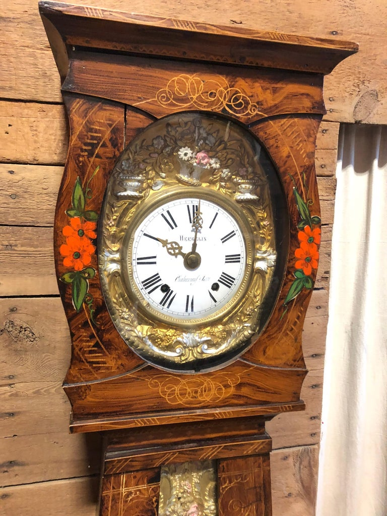 19th Century French Morbier Tall Case Clock For Sale 5