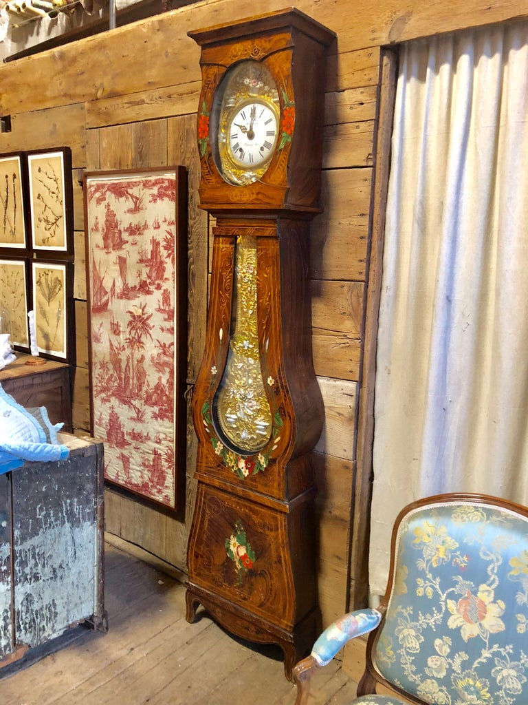 19th Century French Morbier Tall Case Clock For Sale 7
