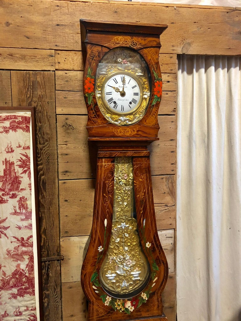 19th Century French Morbier Tall Case Clock For Sale 3